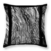 Weathered Wood Triptych Bw Throw Pillow