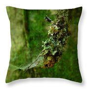 Web N Things Abstract Throw Pillow