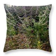 Web2 Throw Pillow