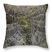 Web2hdr Throw Pillow