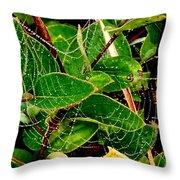 Web4 Throw Pillow