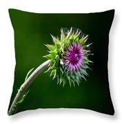 Webbed Thistle Throw Pillow