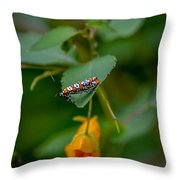 Webworm Throw Pillow