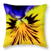 Wee Kiss Of The Sun Throw Pillow