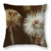 Weed Travel The World Throw Pillow