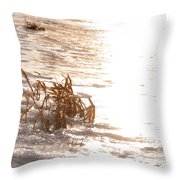 Weeds On Ice Throw Pillow