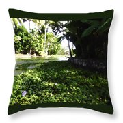 Weeds Plants Boats And Lots Of Greenery Throw Pillow