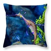 Weedy Seadragon Throw Pillow