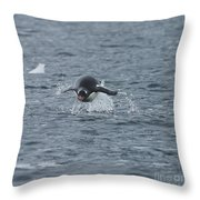 Weee... Here I Come.. Throw Pillow