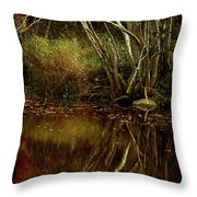 Weeping Branch Throw Pillow