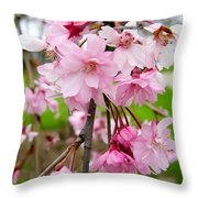 Weeping Cherry Blossoms Throw Pillow