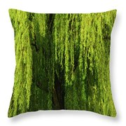 Weeping Willow Tree Enchantment  Throw Pillow