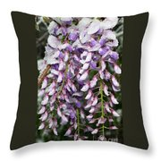 Weeping Wisteria - Spring Snow - Ice - Lavender - Flora Throw Pillow