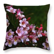 Weigela Branch Throw Pillow