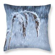 Weight Of Winter Throw Pillow