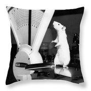 Weight Watcher Lab Rat Throw Pillow