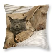 Weimaraner Asleep With Cat Throw Pillow