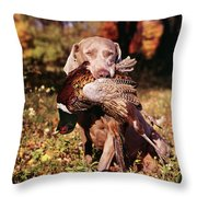 Weimaraner Hunting Dog Retrieving Ring Throw Pillow
