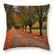 Welcome Home Bradford Pear Lined Drive-way Throw Pillow