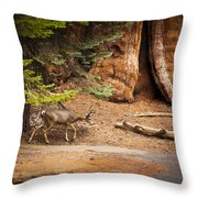 Welcome Home - Sequoia National Forest Throw Pillow