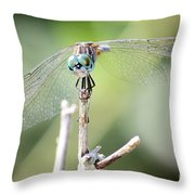 Welcome To My World Dragonfly Throw Pillow