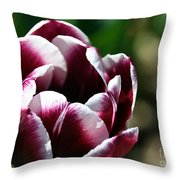 Welcome To Spring Throw Pillow