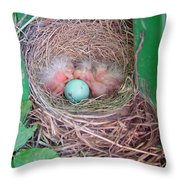 Welcome To The World - Hatching Baby Robin Throw Pillow