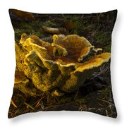 Well Lit Fungi Throw Pillow