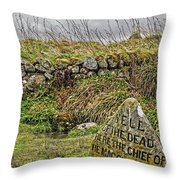 Well Of The Dead Throw Pillow