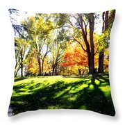 Well Traveled Path Throw Pillow