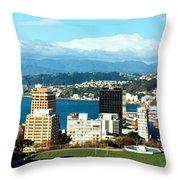 Wellington  Throw Pillow