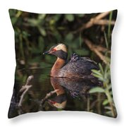 Were Reflected Throw Pillow