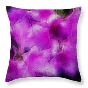 wers 2078  Traveling Pigments HP Throw Pillow