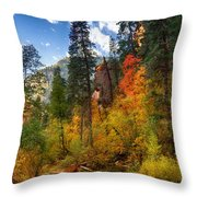 West Fork Wonders  Throw Pillow by Saija  Lehtonen