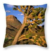 West Grand Canyon Throw Pillow