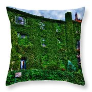 West Village Townhouse Ivy Throw Pillow