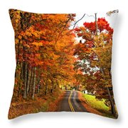 West Virginia Wandering Paint Throw Pillow