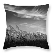 West Wind Bw Throw Pillow