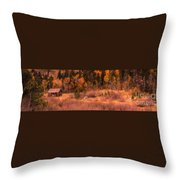Western Barn At Sunset Iv Throw Pillow