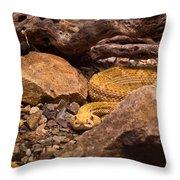 Western Diamondback Rattlesnake 2 Throw Pillow