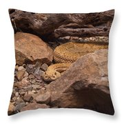 Western Diamondback Rattlesnake Throw Pillow
