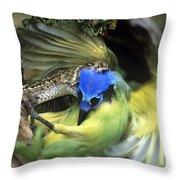 Western Diamondback Rattlesnake Striking Green Jay Throw Pillow