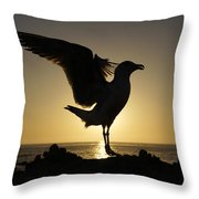 Western Gull At Sunset California Throw Pillow