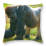 Western Lowland Gorilla Male Throw Pillow