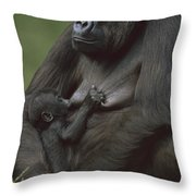 Western Lowland Gorilla Nursing Infant Throw Pillow