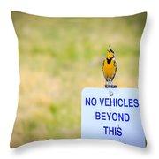 Western Meadowlark Singing Throw Pillow