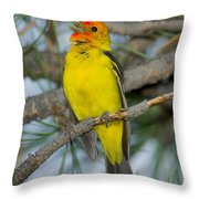 Western Tanager Singing Throw Pillow