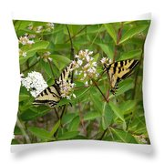 Western Tiger Swallowtail Butterflies Throw Pillow