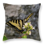 Western Tiger Swallowtail Butterfly 2 Throw Pillow