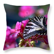 Western Tiger Swallowtail Butterfly On Geranium Throw Pillow